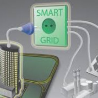 Smart Grid in the Electricity Transmission
